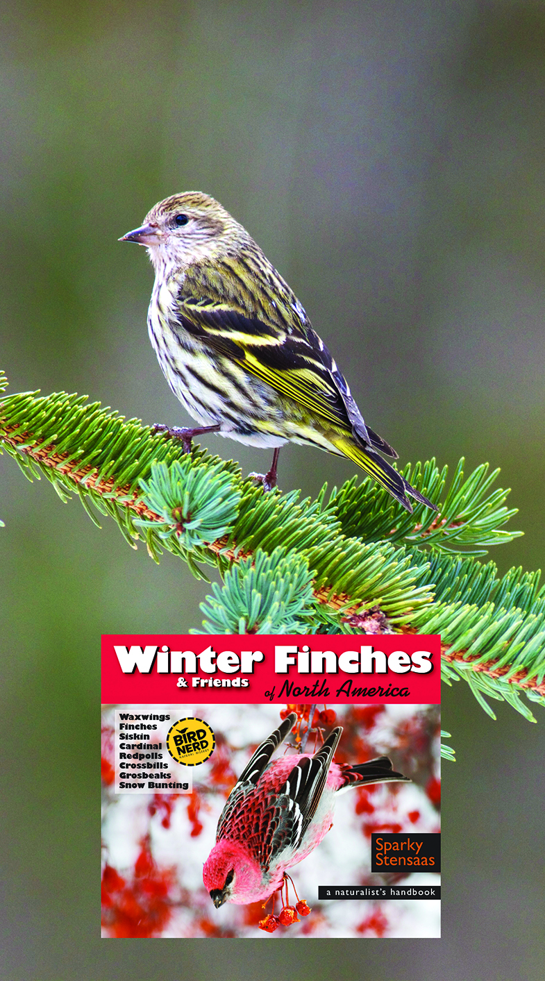 SRP website home page Winter Finches