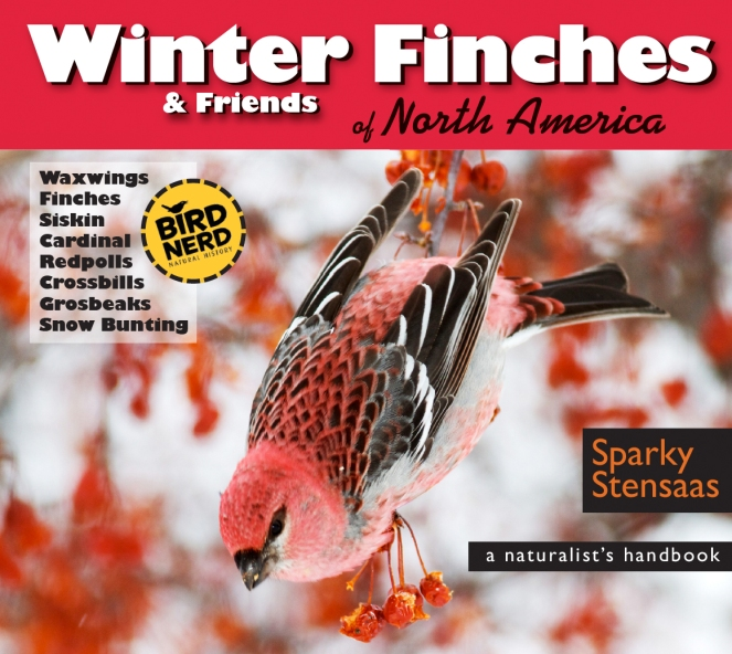 Winter Finches cover screen capture copy