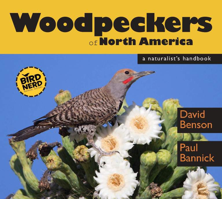 WOODPECKERS COVER FRONT ONLY_Layout 1 copy